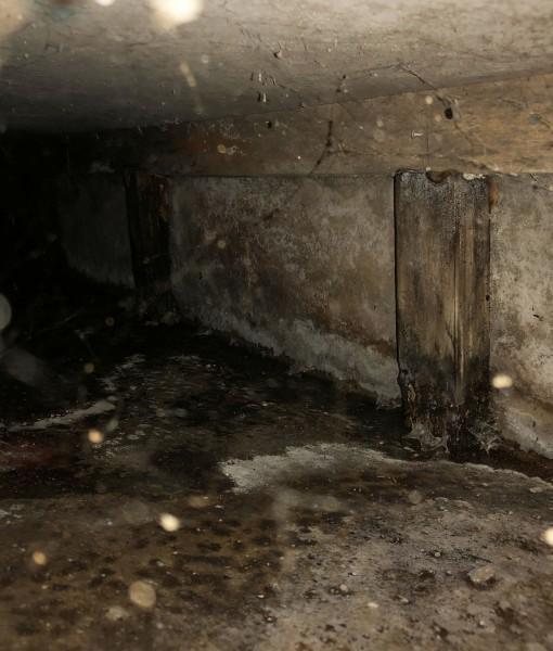 床下を確認、基礎コンクリートスラブ上への浸水と床を支える根太の腐食