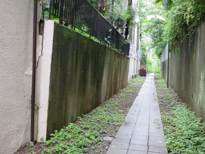 コンクリートでできた擁壁が倒れ掛かってきているのがお分かりいただけるだろうか。見かけた時にはとにかく早く通り過ぎようと思った